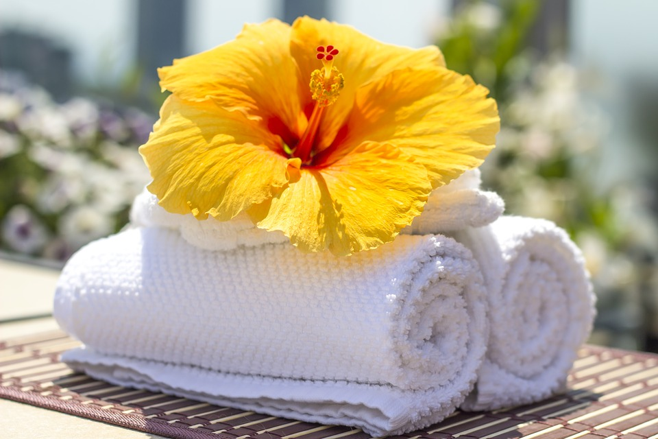 Hibiscus A Flower For Healing Magick Apothecary11